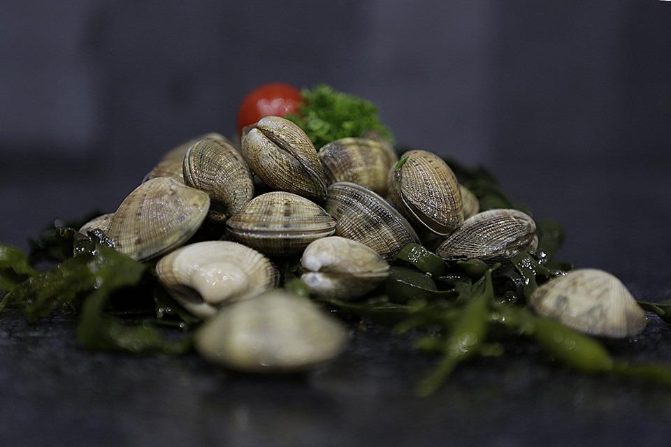 Vongoles - Fishtime